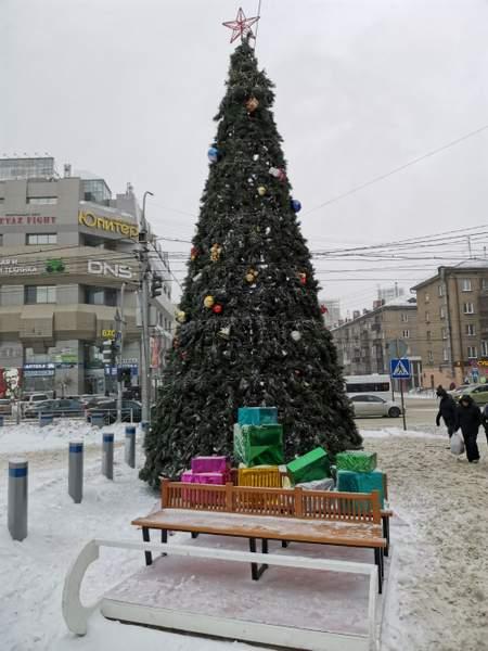 Árbol de la ciudad - Novosibirsk