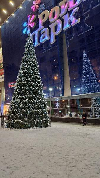 Árbol de navidad cerca de Royal Park - Novosibirsk