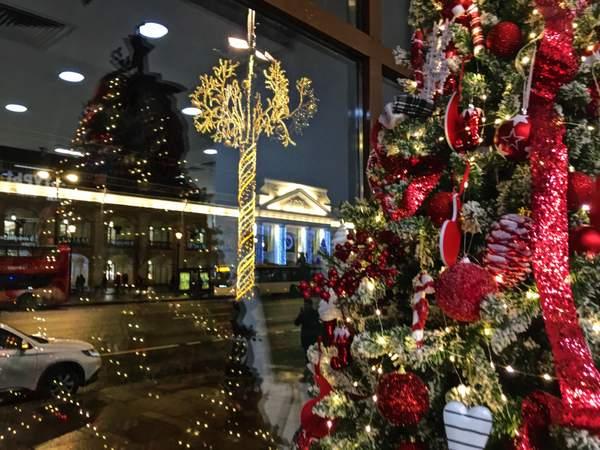 festive guise